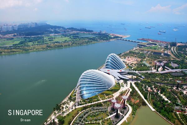 新加坡海关规定特别提醒