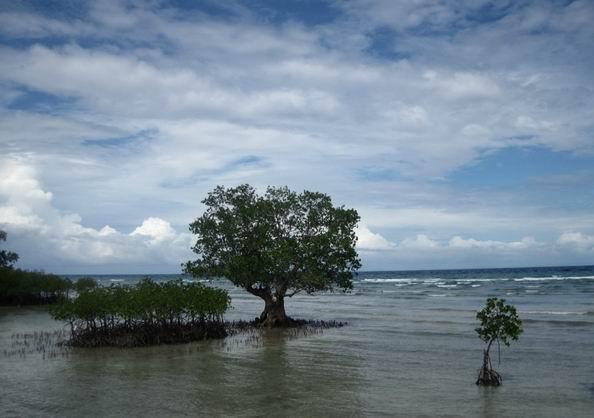 杜马盖地旅游景点:锡基霍尔岛