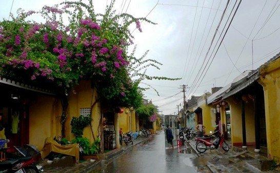 春节越南旅游注意事项