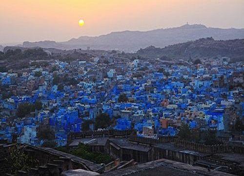 """印度焦特布尔:沙漠绽放""""蓝色妖姬"""""""