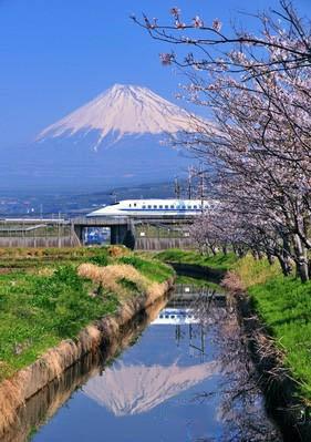 """日本静冈""""四大之最""""让你旅游不再愁"""