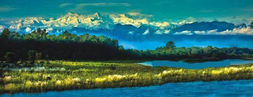 尼泊尔奇特旺:走进密林的心脏