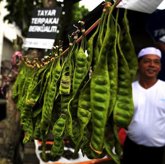 马来西亚品味娘惹文化 寻找郑和遗迹