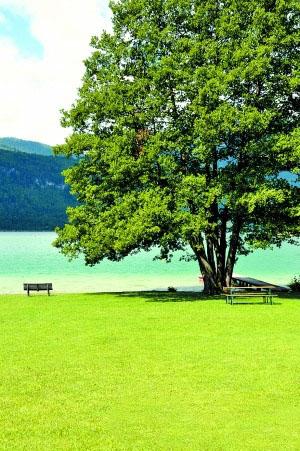 奥地利童话风情小镇老生活