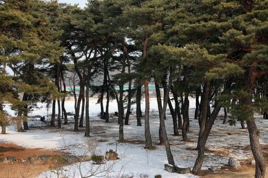 安东衡湖 韩国传统文化精髓之地