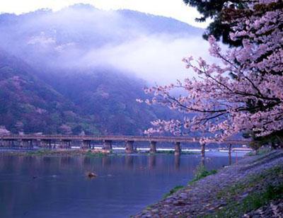 日本静冈县一年四季的天气怎么样