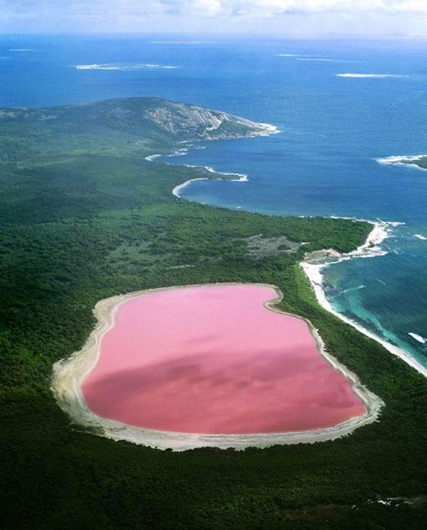 """粉红湖泊 澳洲碧蓝海岸上的美丽""""碧玺"""""""