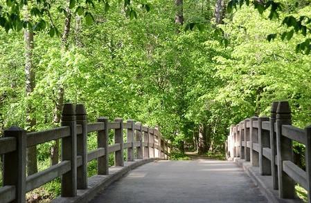 华盛顿景点:石溪公园