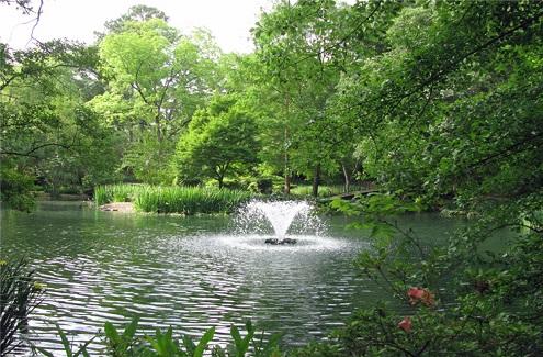 密西西比州杰克逊景点:Mynelle花园