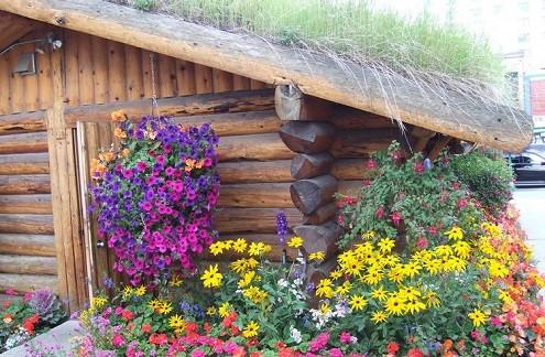 阿拉斯加州安克雷奇景点:ACVB小木屋旅游中心