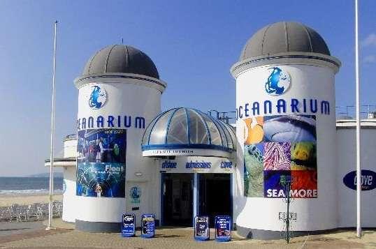 伯恩茅斯海洋水族馆