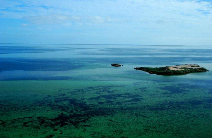 西澳大利亚鲨鱼湾_珀斯_澳大利亚