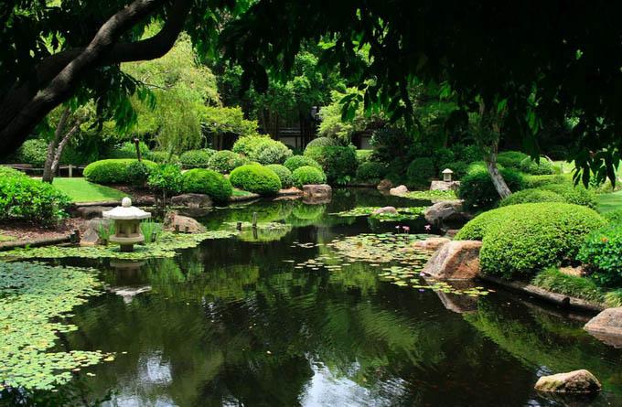 库萨山公园_布里斯班_澳大利亚
