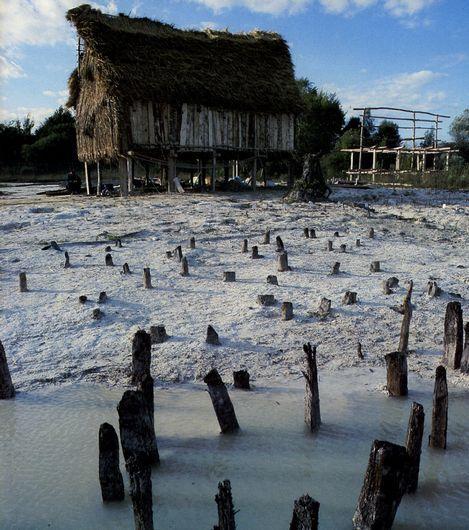 阿尔卑斯地区史前湖岸木桩建筑