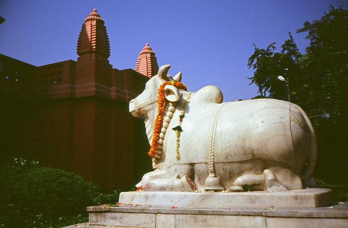 新湿婆神庙_瓦拉纳西_印度