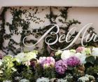 贝莱尔酒店-图片