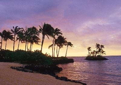 【玛娜岛+主岛索菲特】斐济风情六天四晚